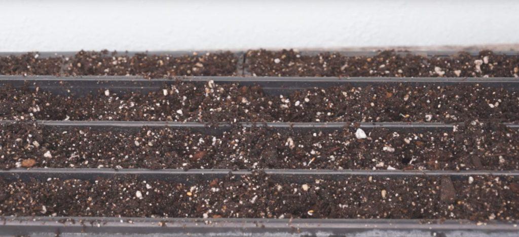 Подготовка грунта для рассады баклажнов.