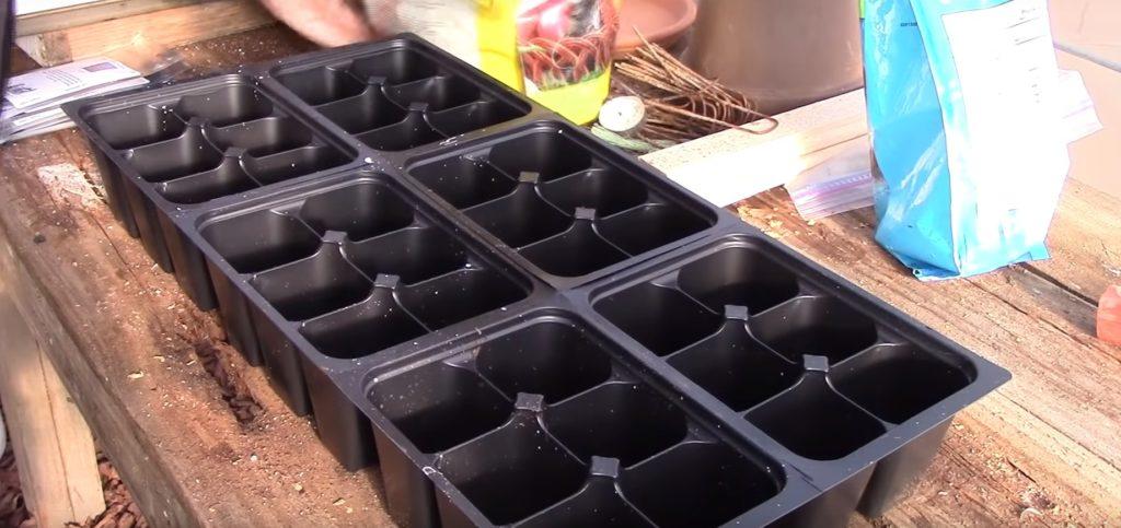 Пластиковый контейнер для рассады.
