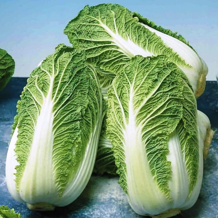 Сорт пекинской капусты Княжна