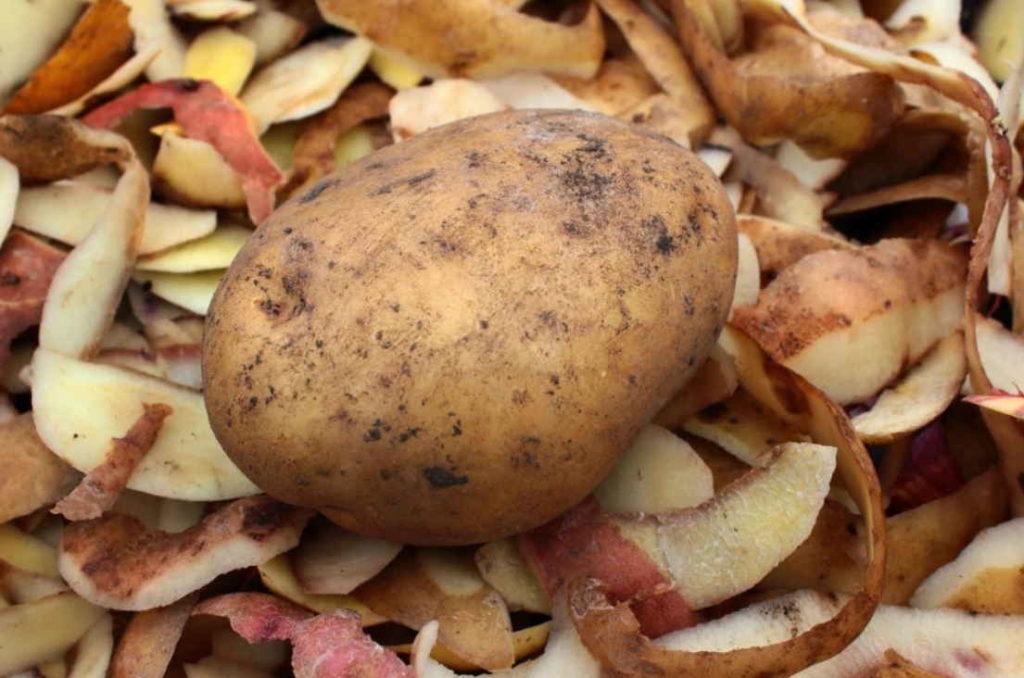 Картофельные шкурки.