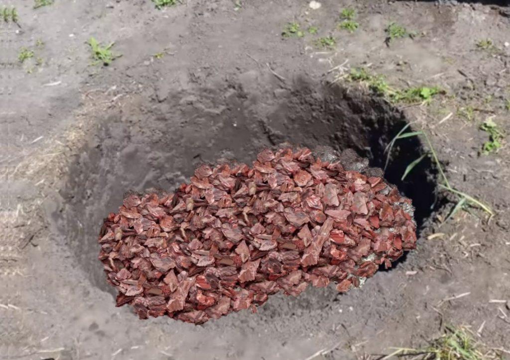 Почва для посадки саженца абрикоса.